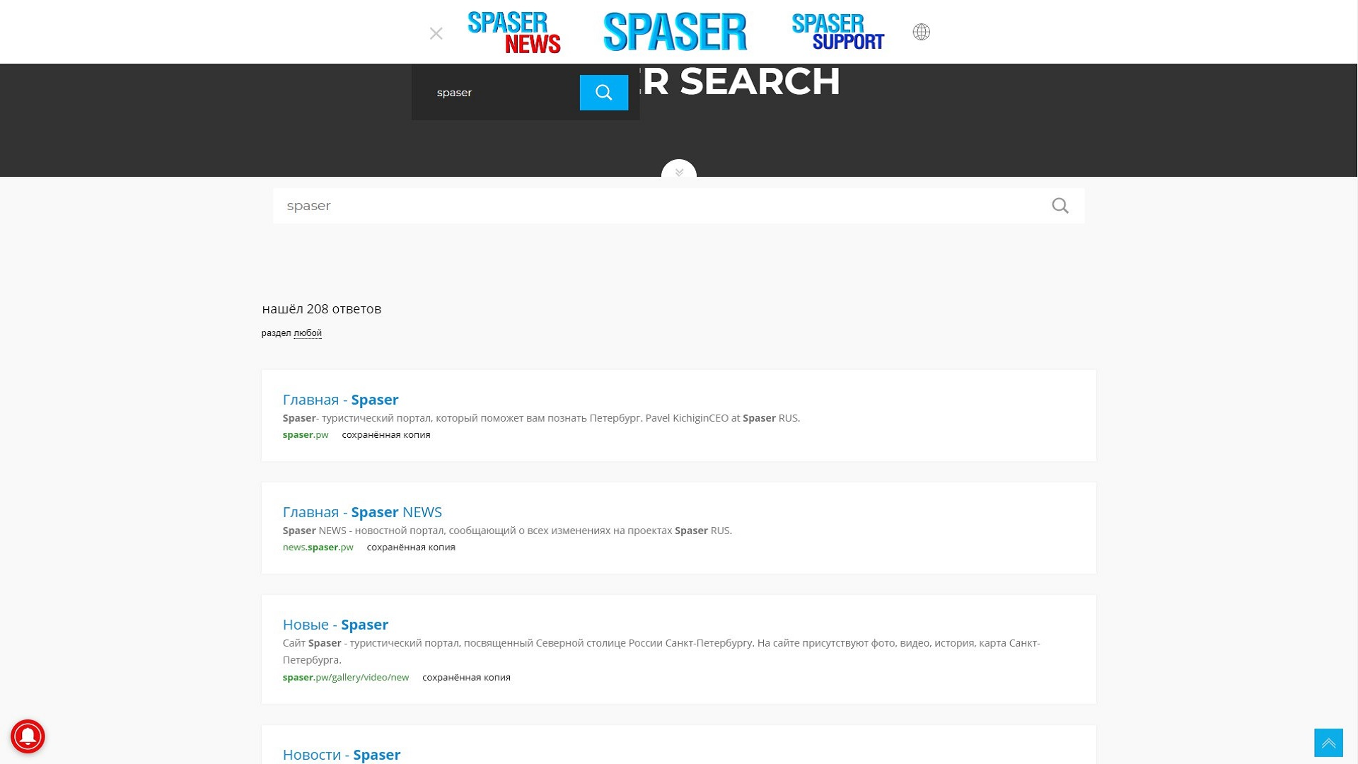 Spaser Search